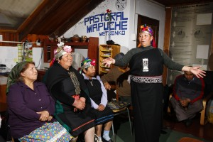 17. Mapuche